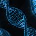 Genetica e creatività: trovato il legame tra genio e sregolatezza