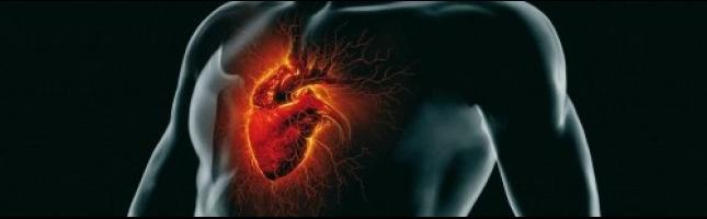 l-ecocardiografia-tridimensionale-aspetti-tecnici-e-metodologia